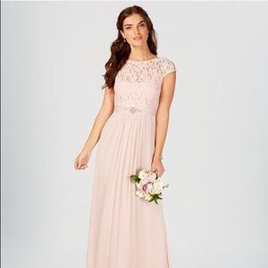 Adrianna Papell Lace Illusion Gown (color - Blush)